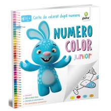 NumeroColor • Junior - Editura Gama