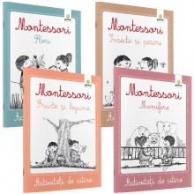 Activitati de citire Montessori